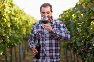Polyphenole und OPC machen Rotwein gesund